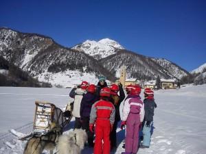 Activité Chien de trâineaux Chalet Alp Azur